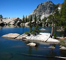 Seavy Pass, Pacific Crest Trail, CA 2012 by J.D. Grubb
