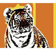 TIGER TIGER-22 Photographic Print