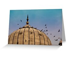Pigeons around dome of the Jama Masjid in Delhi in India Greeting Card