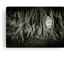 Buddha in the tree Canvas Print