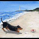 Dachshund on the Beach by dvampyrelestat