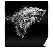 Winter has Come Poster