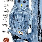 Barred Owl with Haiku by dosankodebbie
