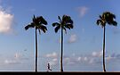 7:28 AM Hawaii Time by Alex Preiss