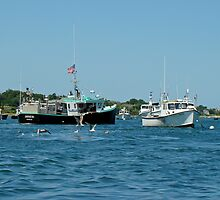 Sleepy Boats at Chatham Harbor - Cape Cod  MA by MotherNature