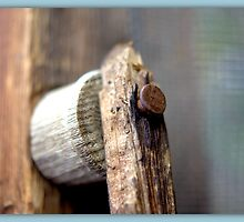 HANDLE by Betsy  Seeton