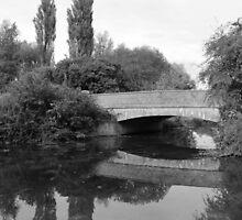 River Reflection by Mark Kerton
