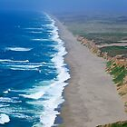 Point Reyes Endless Beach by Diego  Re