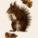 Squirrel by Heaven7
