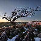 Last Throws Of Winter On Malham Moor by SteveMG