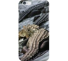 American Alligators! iPhone Case/Skin
