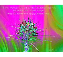 He Shall See His Face With Joy Photographic Print