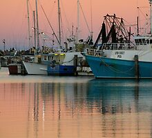 Fishing fleet at sunset by SharronS
