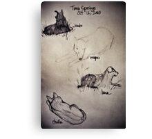 Dog Studies Canvas Print