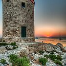 Rhodes Harbour Windmill by Fraser Ross