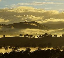 Winter morning, Everton hills by Kevin McGennan
