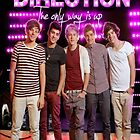 One direction Iphone/ipod  by mitchrose
