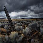 The Way It Was ~ Fort Rock ~ by Charles & Patricia   Harkins ~ Picture Oregon