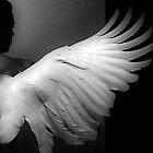 Wings of an angel by Mark Walton