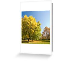 Autumn serenity. Greeting Card