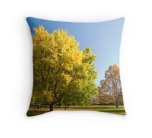 Autumn serenity. Throw Pillow
