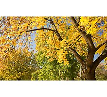 Autumn serenity. Photographic Print
