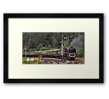 92214 Cock O' The North Framed Print
