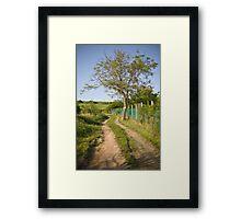 Rural tranquility. Framed Print