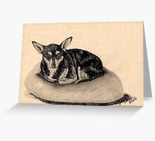 Peppy the Chihuahua Greeting Card