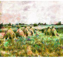 Harvested Russian Field Photographic Print