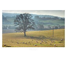 Teme Valley Photographic Print