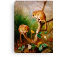 Mice Are Nice Canvas Print