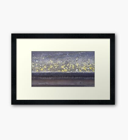 Lichen ledge Framed Print