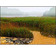Reeds & Fog Stony Brook Photographic Print