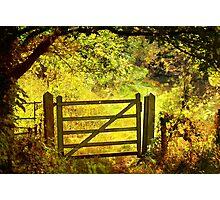 Gate To Escot Church Photographic Print