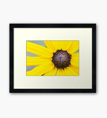Nature is Bright and Beautiful Framed Print