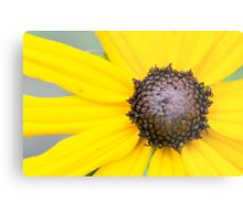 Nature is Bright and Beautiful Metal Print