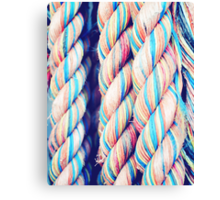 Rainbow Ropes Canvas Print