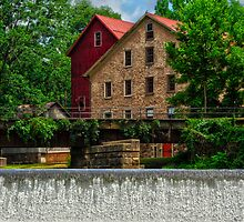 A view from the River by Debra Fedchin