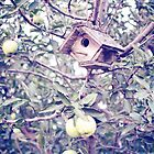 1 Apple Tree Ln. by Beth Thompson