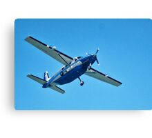 Flypast ~ RAF Falcons Canvas Print