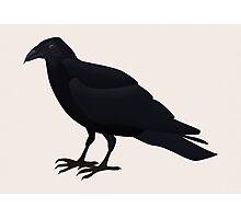 Quoth the Raven Photographic Print