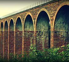 Leaderfoot Viaduct by Christine Hingley