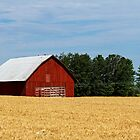 Red Barn in Hay Field by Kenneth Keifer