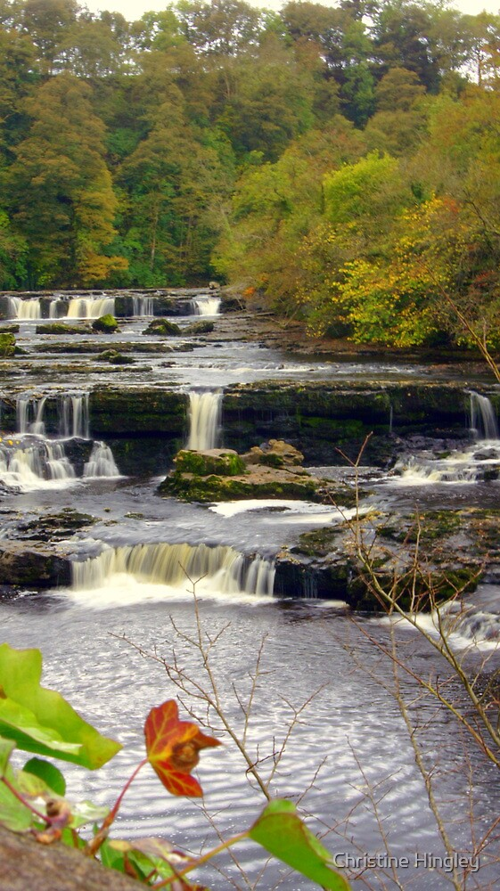 Aysgarth Falls by Christine Hingley