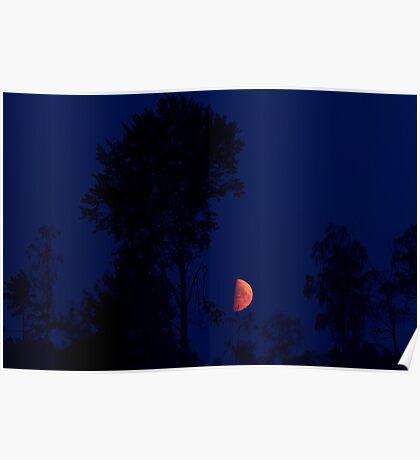 Moon Shining High Poster