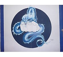 Wall mural for martial arts gym Photographic Print