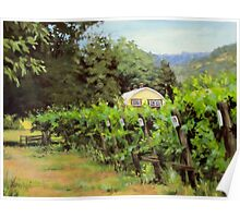 Vineyard View Poster