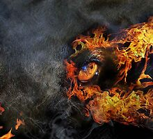 The Raging Fire Within by Bine