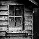 The Shed by Karen E Camilleri